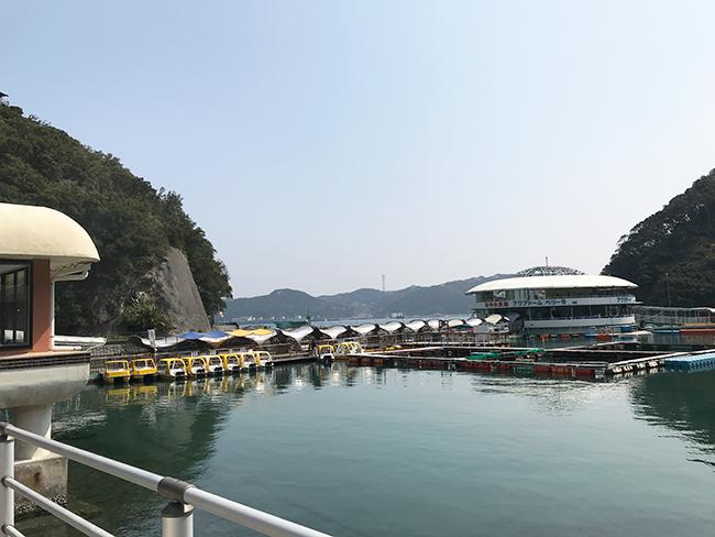 下田海中水族館
