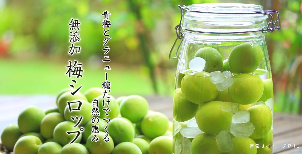 小戸橋製菓梅シロップ