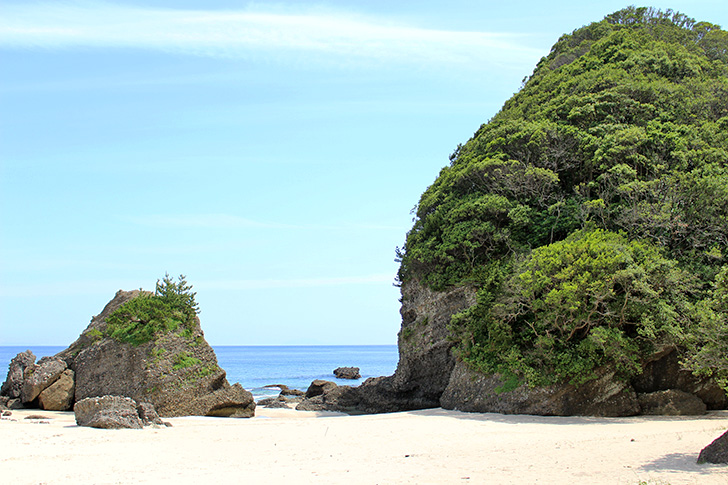 SunnySide【伊豆下田・吉佐美・大浜】海を眺めながらランチ
