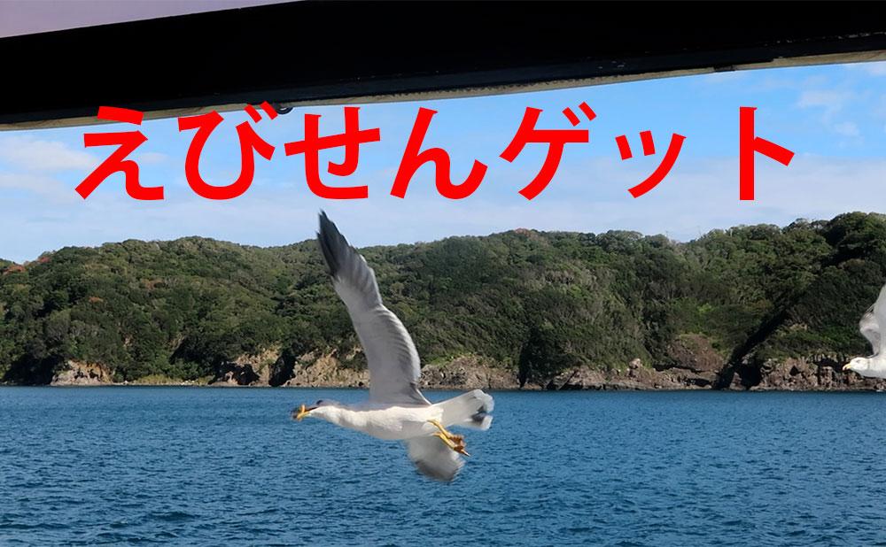 伊豆クルーズ 下田遊覧船 サスケハナ号