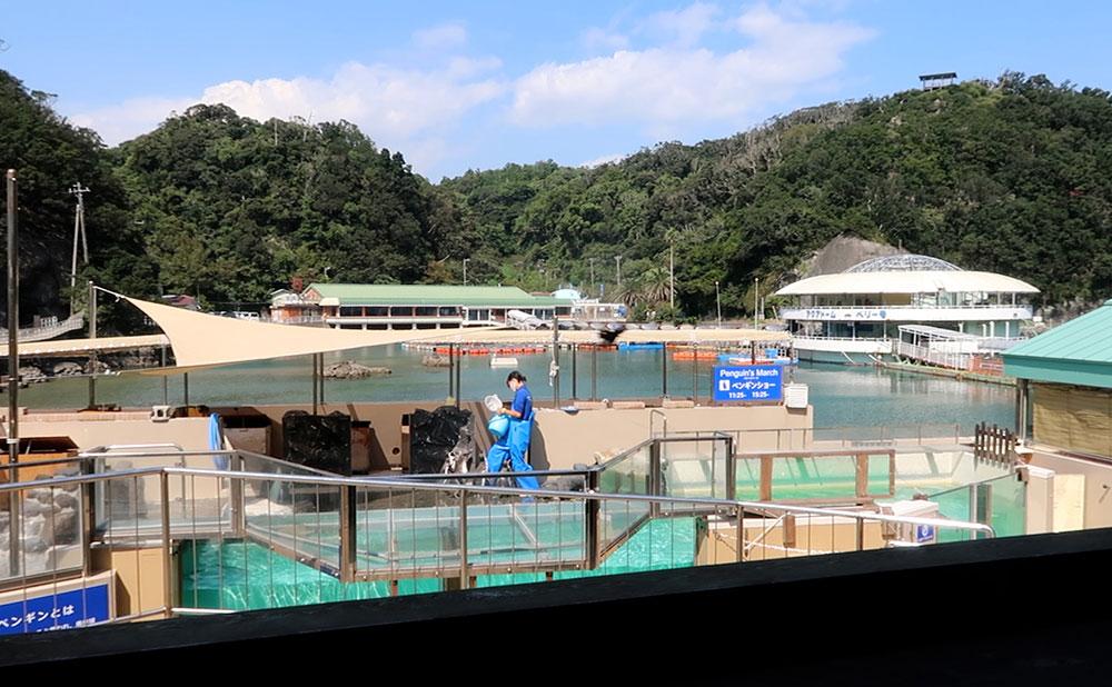 下田海中水族館 カフェテリア