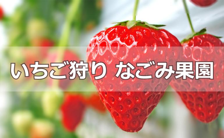 なごみ果園バナー